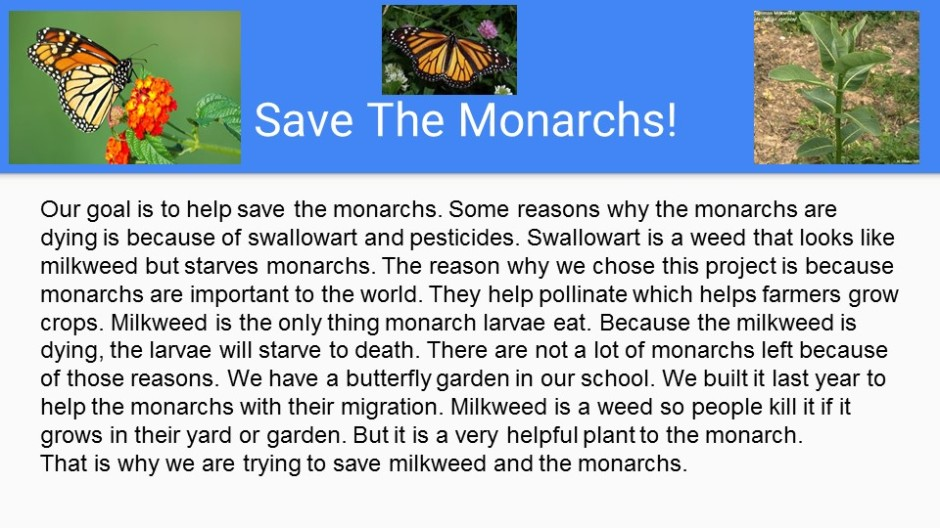Save the Monarchs!